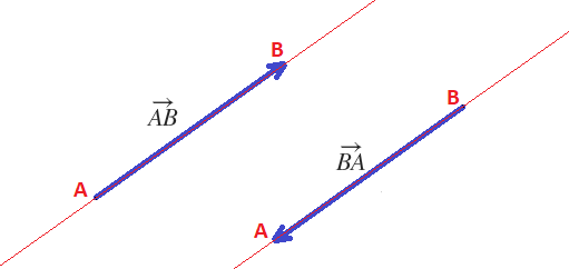 what are the components of a vector